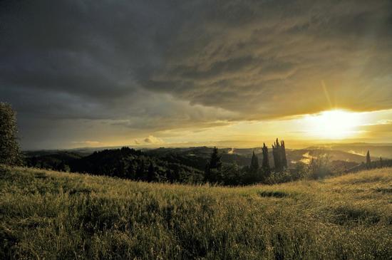 Monte Oliveto Maggiore ...  - Asciano (1283 clic)