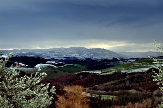 Panorama di Montalcino (1075 clic)