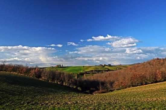 Val d'Orcia (1213 clic)