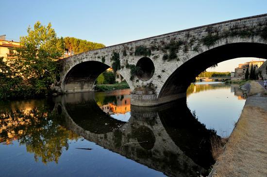 Riflesso... - Prato (1383 clic)