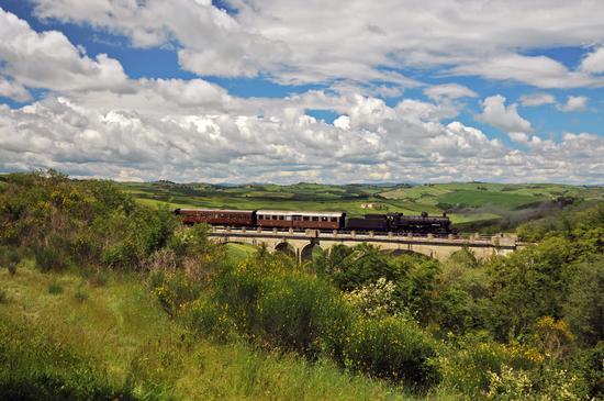 Treno Natura  - Asciano (4214 clic)