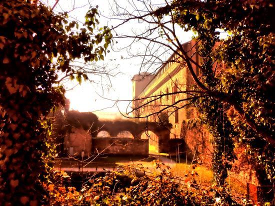 Castello Visconteo - Pavia (484 clic)
