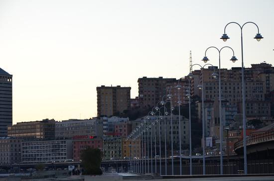 Tutti in fila.... - Genova (966 clic)