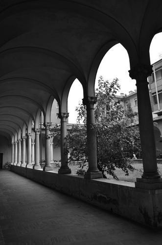 Archi in bianco e nero - Ferrara (740 clic)