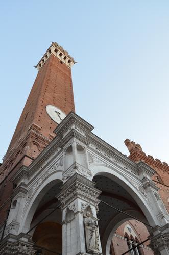 La Torre a Siena (568 clic)