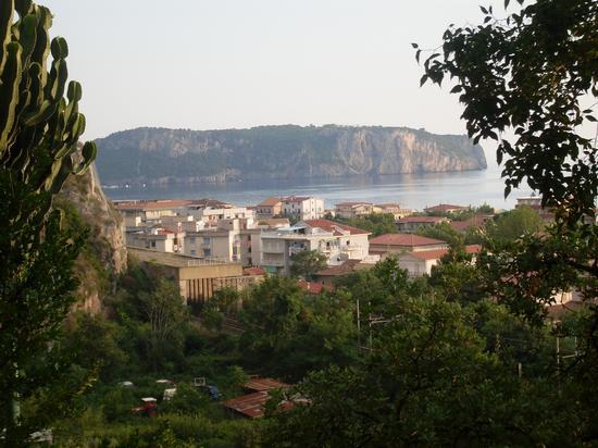 L'Isola di Dino vista dalla Madonna della Grotta di Praia a Mare (905 clic)