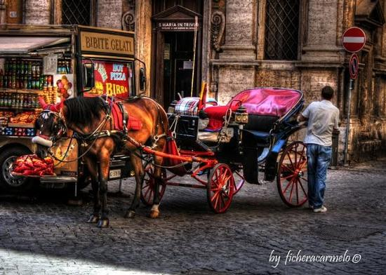 Roma in carrozza... 2 (957 clic)