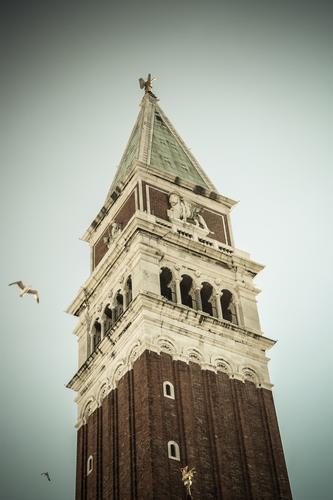 Campanile di S.Marco... - Venezia (1137 clic)