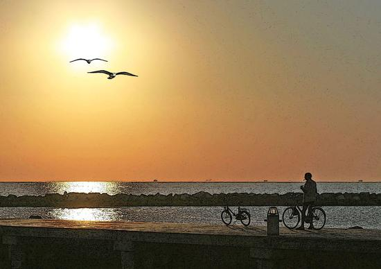 Gabbiani al tramonto..... - Bellaria igea marina (1110 clic)
