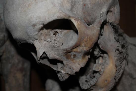Mummie di Urbania (1207 clic)