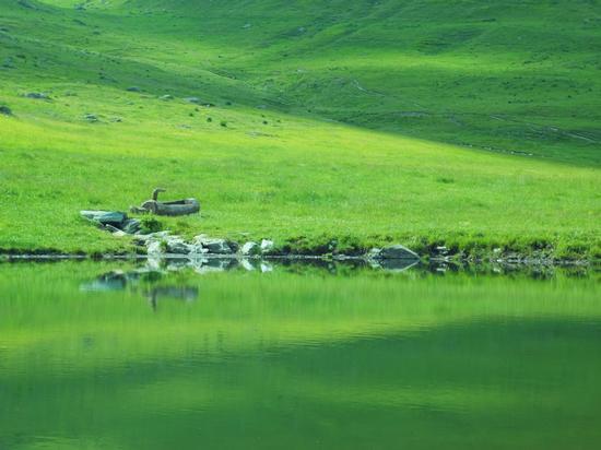 specchio verde - OLLOMONT - inserita il 22-Jul-13