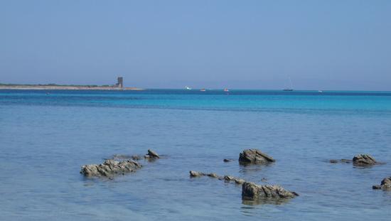 colori del mare - Stintino (918 clic)