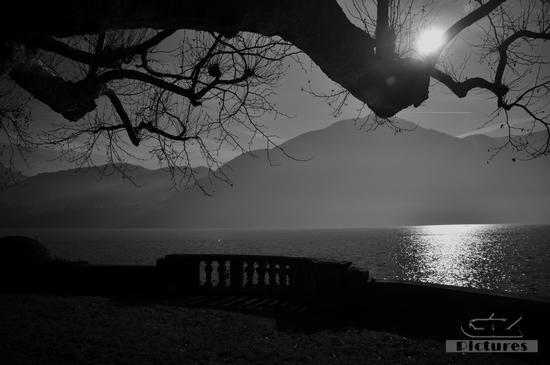 Luce, controluce e nebbia sul lago. 2 - Tremezzo (588 clic)