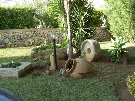 giardino - Avola (1849 clic)
