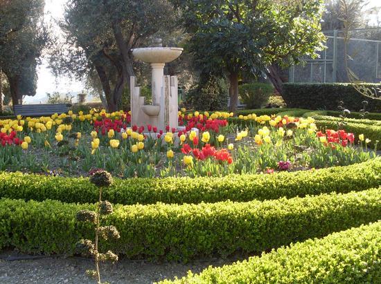 giardino fiorito - Taormina (1589 clic)