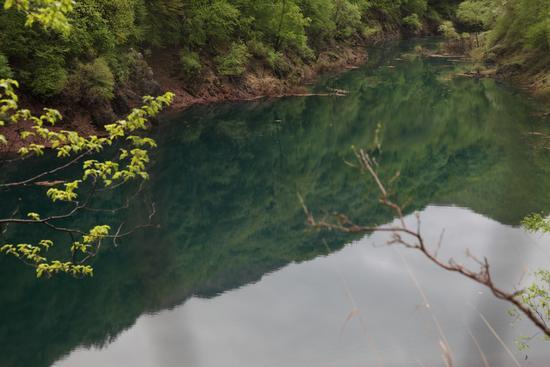 Riflesso di montagne verdi nel Lago della Grotta del Campanaro - Picinisco (683 clic)