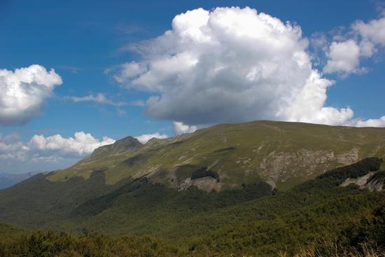 Monte Cusna - Ligonchio (1580 clic)