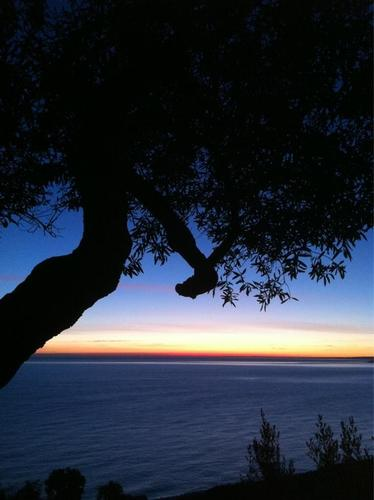 Aspettando il sole - Fossacesia (1293 clic)