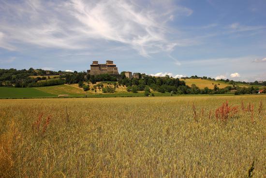 castello di torrechiara (1247 clic)