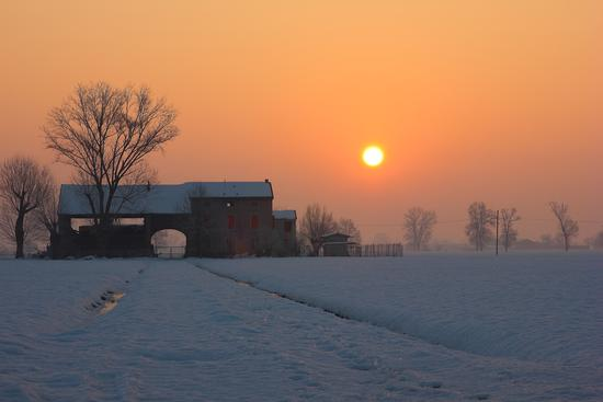 snow,fog and sun - Parma (1113 clic)