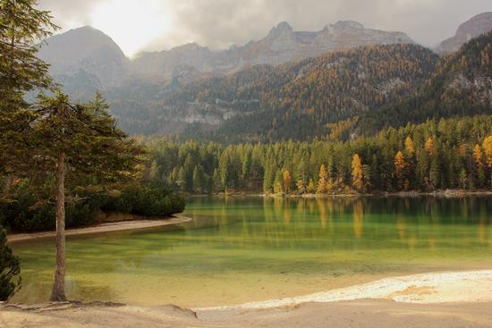 lago di tovel - Val di sole (1025 clic)