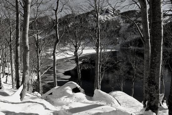 lago santo B-W - Corniglio (1956 clic)