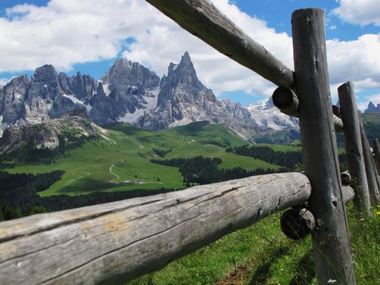 pale di san martino - Paneveggio (3201 clic)