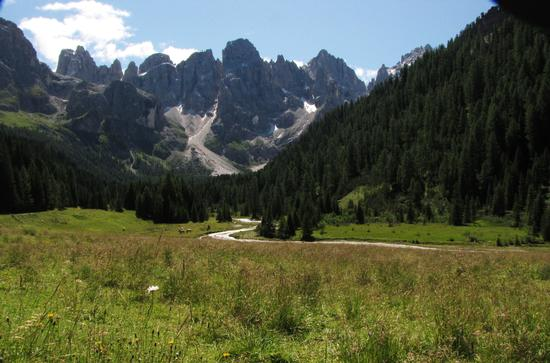 val venegia verso malga venegiota - Paneveggio (1309 clic)