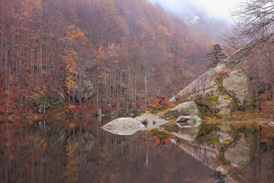 autunno ai lagoni - Corniglio (1061 clic)