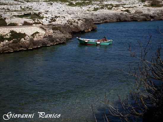 Sapore di mare I - Porto badisco (626 clic)