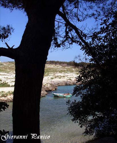 Sapore di mare II - Porto badisco (678 clic)