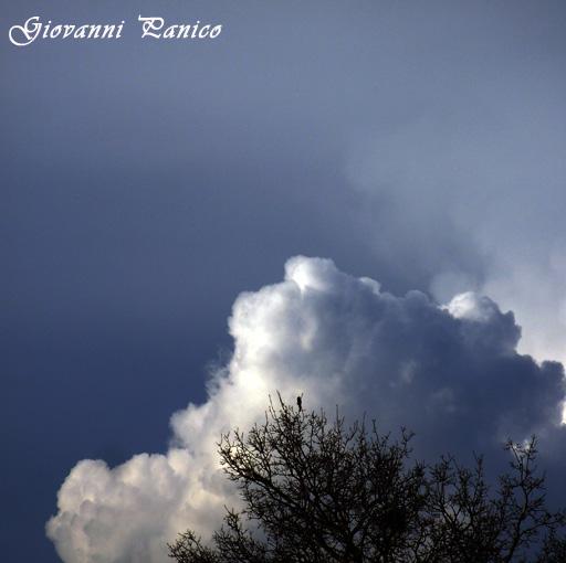 Le nuvole - Tricase (462 clic)