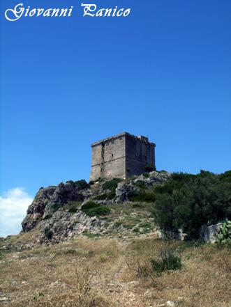 Torre dell'Alto - Santa caterina (673 clic)