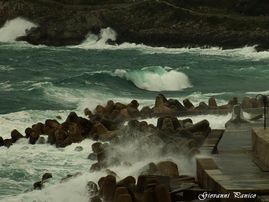 Tetrapodi molo est Porto Tricase - Tricase porto (1161 clic)