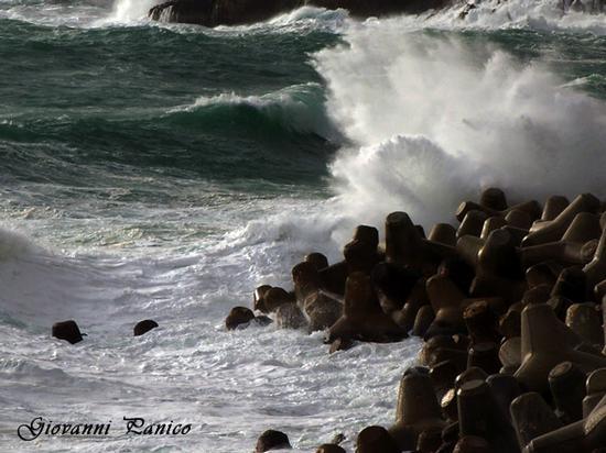 Tetrapodi - Tricase porto (730 clic)