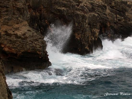 Costa nord di Tricase - Tricase porto (645 clic)