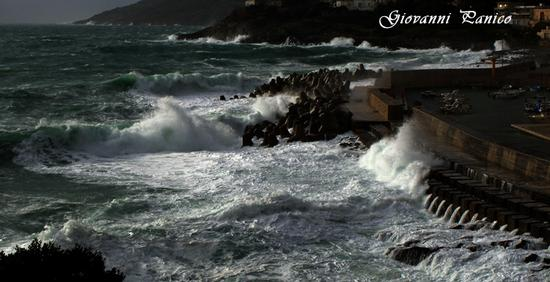 Ingresso Porto - Tricase porto (711 clic)