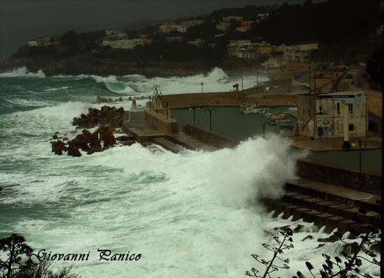 S/E f. 8 - Tricase porto (795 clic)