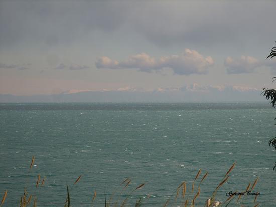 Albania - Tricase porto (1003 clic)