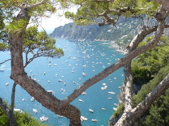 Capri. Terrazza sul mare (1041 clic)