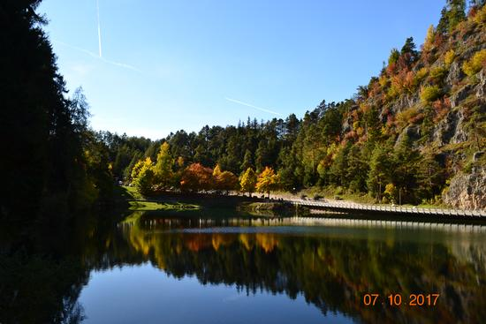 autunno - Fondo (433 clic)