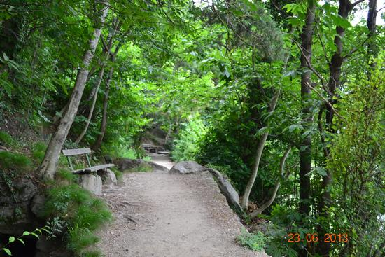 camminare in mezzo alla natura.... - Lagundo (859 clic)