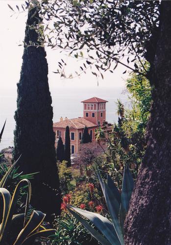 orto /giardino botanico villa hanbury - Ventimiglia (777 clic)