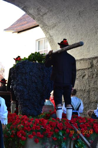 festa dell'uva - Merano (1058 clic)