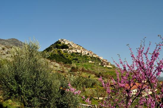 Panorama - Castelcivita (2141 clic)