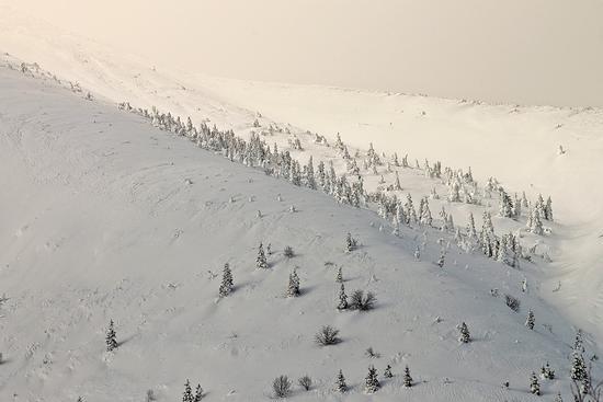 Bianco più bianco  - Passo di monte croce carnico (1289 clic)
