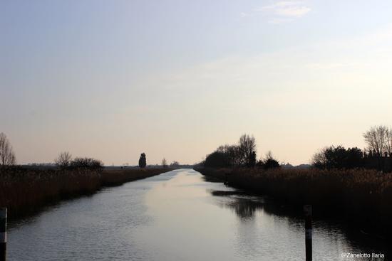 Calme acque - Fiumicello (594 clic)