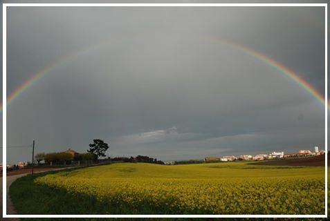 Rainbow - LORETO - inserita il 11-May-17