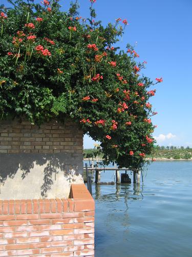 venezia burano (865 clic)