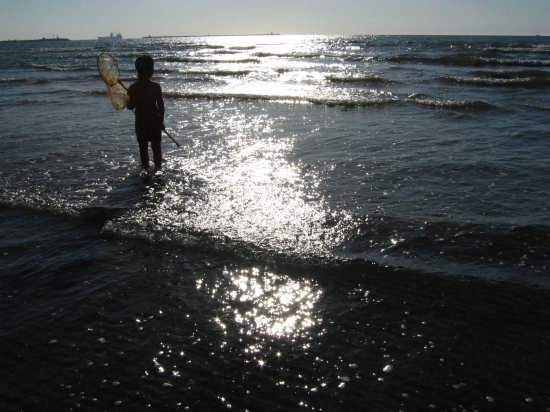 All'alba ... a pescare i granchietti - SOTTOMARINA - inserita il 16-Aug-07